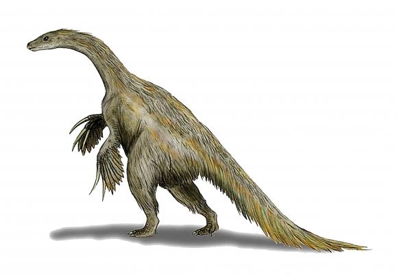 73-therizinosaurus-a-dinosaur-oddity