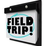 Rockwatch Field Trip to Dorset – 2 July 2016