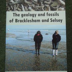 New books for keen Fossil Hunters