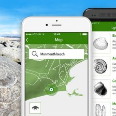 Vital for fossil hunters!  New NHM Fossil Explorer app.