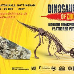 Join us on a Dinosaur of China Exhibition Visit – 23 August 2017