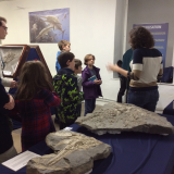 Rockwatch with the Ichthyosaurs in Somerset