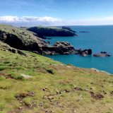 Pembrokeshire weekend for Rockwatchers!