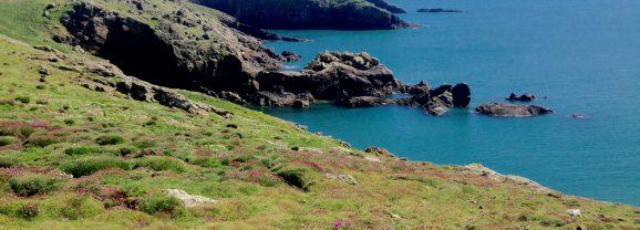 Pembrokeshire weekend for Rockwatchers!