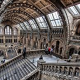 Dino-craft at the British Geological Survey, NHM London – Tuesday 16 April
