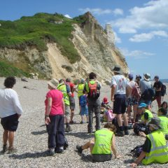 Fossil hunting and geology on the Dorset Coast 29 July – 2 August