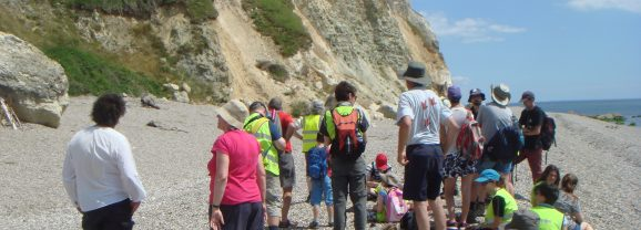 Fossil hunting and geology on the Dorset Coast