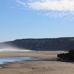 Yorkshire Coast Fieldtrip – Saturday 20 July