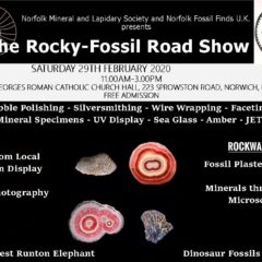 Rocky Roadshow in Norwich on Saturday 29 February – 2020