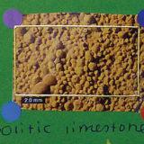 Edible Sedimentary Oolitic Limestone