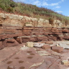 The Bendricks Fossilised Dinosaur Footprints in South Wales