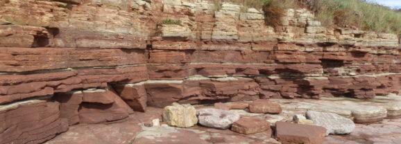 The Bendricks Fossilised Dinosaur Footprints in South Wales