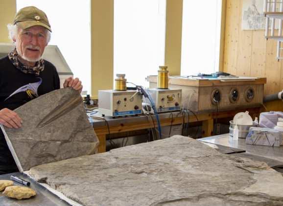 Live preparation of a probable new species of Ichthyosaur